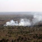 В поселке Восточный сгорела брошенная древесина