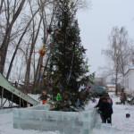 Где в Серове купить елку на Новый год?