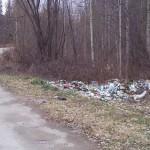 Планета мусора - виды у Киселевского водохранилища
