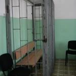 Серовский предприниматель Ахмадишина полностью признала свою вину
