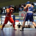 Традиционно турнир соберет всех любителей бокса. Фото из архива редакции