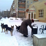 Прожиточный минимум в области увеличен на 165 рублей