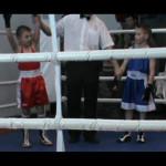 Серовские боксеры стали победителями и призерами турнира