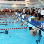 Серовские пловцы – лучшие в области