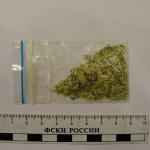 В Серове изъято более 50 граммов курительных смесей