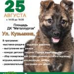 В Серове впервые пройдет выставка-раздача бездомных животных