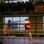 В Серове открылся турнир по боксу Кубок Константина Цзю