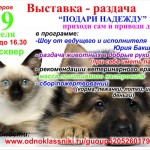 Выставка-раздача бездомных животных в Серове переносится