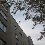 """Вот это фонарь теперь освещает дворовую территорию дома № 134-б по улице Ленина. Фото: Константин Бобылев, """"Глобус""""."""