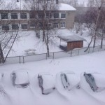 Подснежники во дворе на улице Заславского. Фото: Елена Захарова