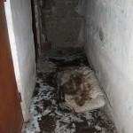"""На месте пожара до сих пор лежит обгоревший матрац, служивший, судя по всему, постелью для пострадавшего. А двери подвала все так же открыты. Фото: Константин Бобылев, """"Глобус""""."""