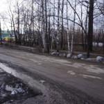 Более 110 предприятий и организаций наведут чистоту в Серове