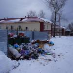 Сити-менеджер Серова велел навести порядок на контейнерных площадках