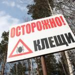 Фото с сайта kurer-sreda.ru