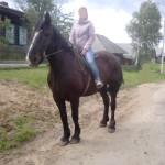 В сосьвинском селе Романово украли лошадь