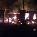 В пожаре никто из людей не пострадал.