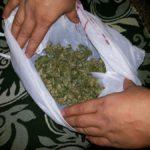 Помни! Наркотики - зло! Фото: полиция Серова