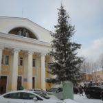 """Ель перед ДКЖ устанавливают каждый год. Фото: Константин Бобылев, """"Глобус""""."""