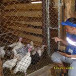 Статистики Серова награждены за проведение сельхозпереписи