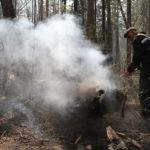 """Власти запрещают сельскохозяйственные отжиги травы. Говорят, что они становятся причиной лесных пожаров. Фото: архив газеты """"Глобус""""."""