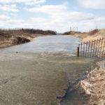 """Читатели сообщили, что ГРЭС слила масло в теплый канал. На месте мы нашли ил и мусор. Фото: Константин Бобылев, """"Глобус""""."""