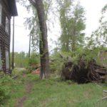 """Ураган повалил деревья, оборвал провода, снес кровлю с домов и бань, повредил теплицы. Фото: Константин Бобылев, """"Глобус""""."""