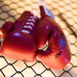 В Серове боксер в баре ударил заводчанина. Тот был госпитализирован. А после - скончался. Фото: pixabay.com
