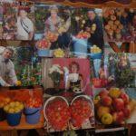 """Фотоотчет о """"садовой жизни"""""""