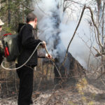 """В 2017 году на территории Серовского лесничества было зафиксировано 7 лесных пожаров. Фото: архив """"Глобуса"""","""
