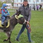 """Дети могли покататься на ослике и лошадях. Фото: Мария Чекарова,""""Глобус""""."""
