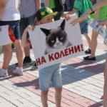 """Малыши проявили креативность.. Фото: Мария Чекарова, """"Глобус""""."""