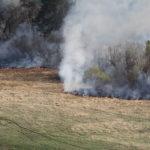 """Чаще всего лесные пожары возникаю весной из-за пала сухой травы на покосах. Фото: архив """"Глобуса""""."""