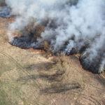 """Пожары были обнаружены с воздуха. Фото: архив """"Глобуса""""."""